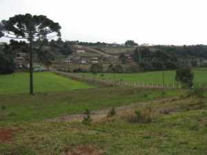 visão da Rua Crescencio Martins vista do Colégio Agrícola