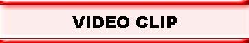 p_video-clip1